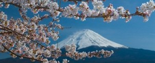日本国籍を取得したい~帰化申請~
